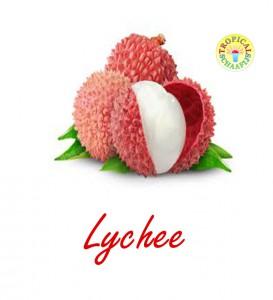 Luchee