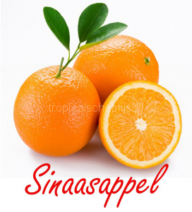 sinaasappel Tropical Schaafijs